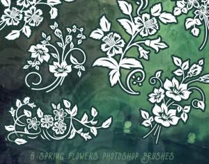 6 Free Spring Flower Ornaments Photoshop brush