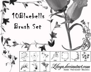 Bluebell Brush Set Photoshop brush