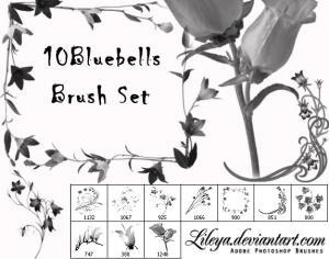 Bluebell Brush Set Photoshop brush