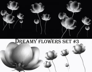 Dreamy Flowers set 3 Photoshop brush