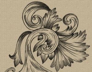 Hand Drawn Decorative Photoshop brush