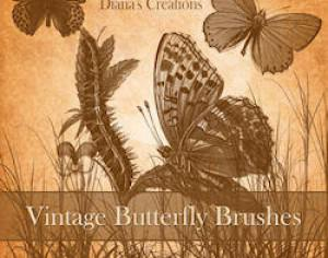 Vintage Butterfly Brushes Photoshop brush