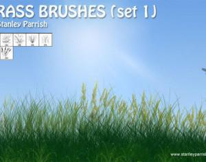 Free Grass Brushes Set 1 Photoshop brush