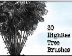 30 HighRes Tree Brushes Photoshop brush