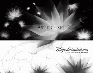 Aster set 2 Photoshop brush
