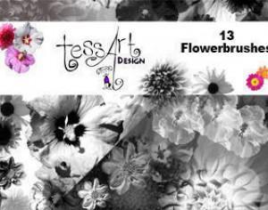 Beautiful Flower Brushes Photoshop brush