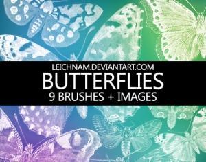 Butterflies Brushes Photoshop brush