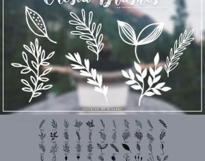 45 Free Plant Brushes Photoshop brush