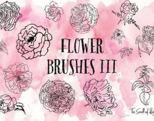Flower Brushes Part 3 - The Smell of Roses Photoshop brush