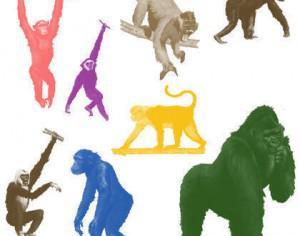 Apes Brushes Photoshop brush