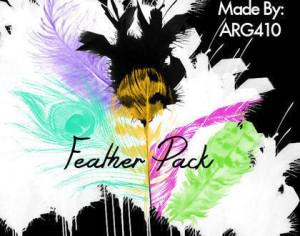 Beautiful Feather Brush Pack (6 Feathers) Photoshop brush
