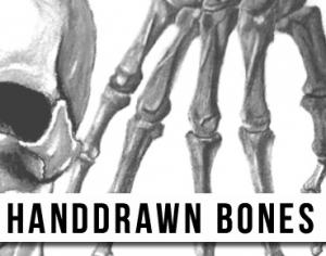 Handdrawn Bones Brushes Photoshop brush