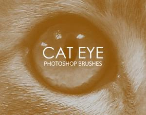 Free Cat Eye Photoshop Brushes Photoshop brush
