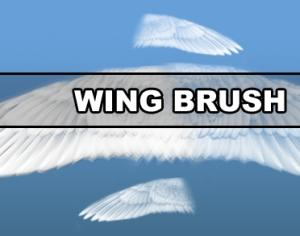 Wing Brush Photoshop brush