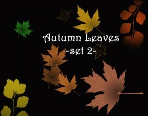 Autumn Leaves set 2 Photoshop brush