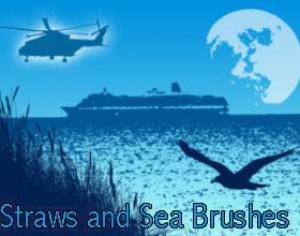 Straws and Sea Brushes Photoshop brush