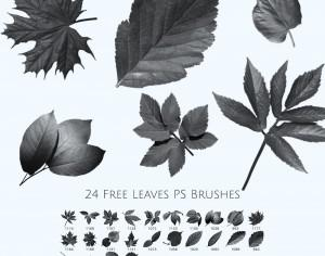 24 Free Leaves Photoshop Brushes Photoshop brush