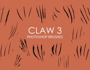 Free Claw Photoshop Brushes 3 Photoshop brush