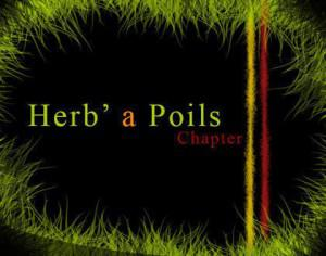 Herb' a Poils Grass Brushes Chapter 2 Camisole Pictures Brushes Photoshop brush