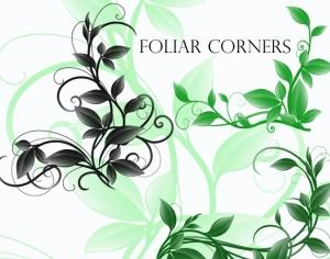 Foliar Corners Photoshop brush
