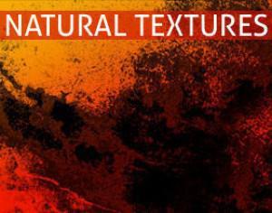 Natural Texture Brushes Photoshop brush