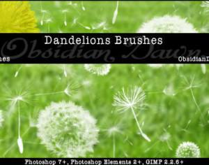 Dandelions Photoshop Brushes Photoshop brush