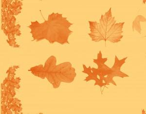 Autumn Leaf Brushset Photoshop brush