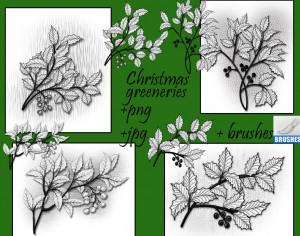 Christmas Greeneries Brushes Photoshop brush