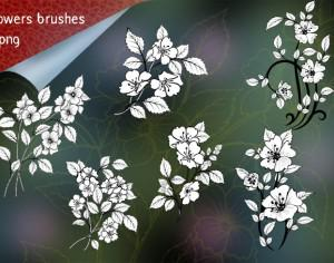 Pack of 6 Flowers Brushes Photoshop brush