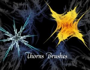 Thorns Brushes Photoshop brush