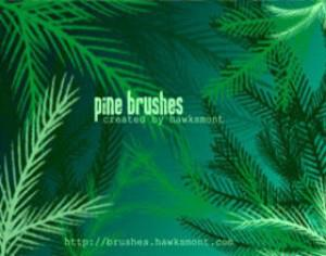 Pine Brushes - MEGA PACK Photoshop brush