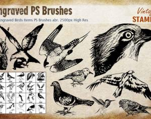 Engraved Bird PS Brushes Photoshop brush