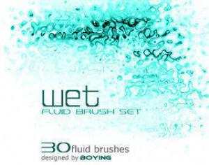 Fluid Brush Photoshop brush