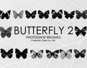 Free Butterfly Photoshop Brushes 2 Photoshop brush