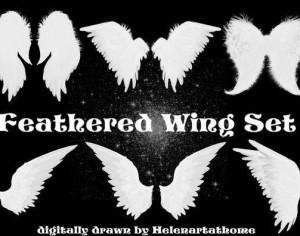 Feathered Wing Set Photoshop brush