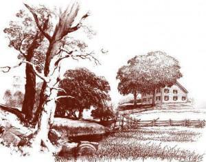 Cottage Brushes Photoshop brush