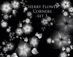 Cherry Flower corners Photoshop brush