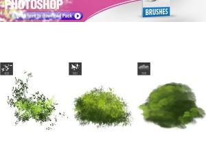 3 Foliage Brushes Photoshop brush