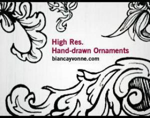 HighRes Hand-Drawn Ornaments 2 Photoshop brush