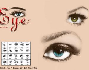 20 Female Eye Ps Brushes Photoshop brush