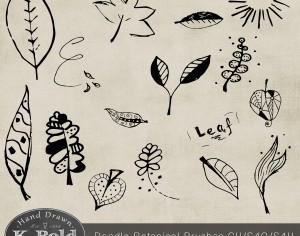 Botanical Doodle Photoshop Brushes Photoshop brush