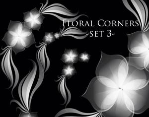 5 Floral Corner Brushes Photoshop brush