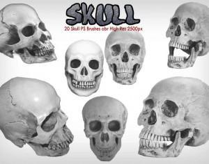 Skull PS Brushes abr Photoshop brush