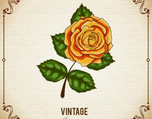Vintage flower illustration with frame Photoshop brush