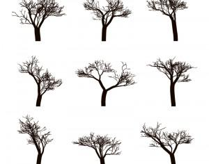 Dead trees Silhouettes Photoshop brush