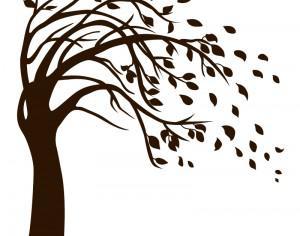 Isolated Black Tree Photoshop brush