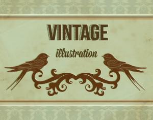 Vintage illustrations with ormanent and swallow Photoshop brush
