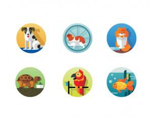Pets icons Photoshop brush