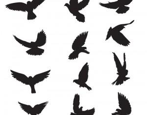 Set of silhouettes of doves Photoshop brush