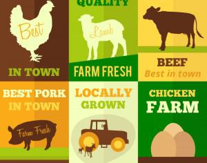 Farm products flat design concept cards Photoshop brush